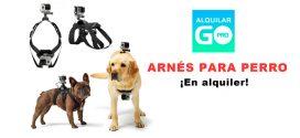 GoPRO: un arnés para tu perro